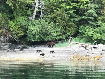 Alaska Part 3 - Sitka