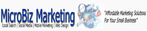 MicroBiz Marketing