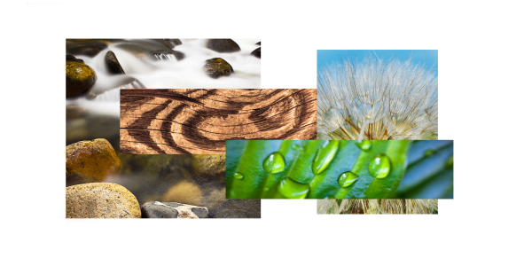 Nature dimensional collage 4