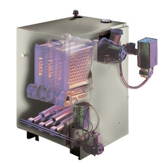 Comfort™ 80 Gas-Fired Boiler BS2