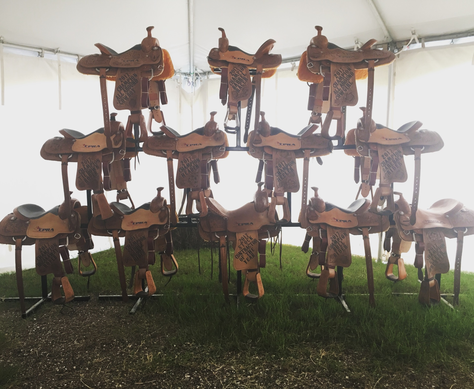 12 Saddle Set