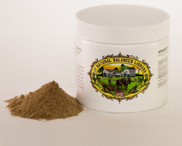 FLAX HULL LIGNAN POWDER (1 Month Supply - 30 Scoops) $39.99