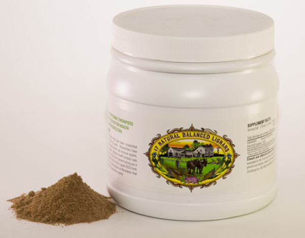 FLAX HULL LIGNAN POWDER (3 Month Supply - 90 Scoops) $99.99