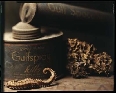 Gulfspray Gulf Kills