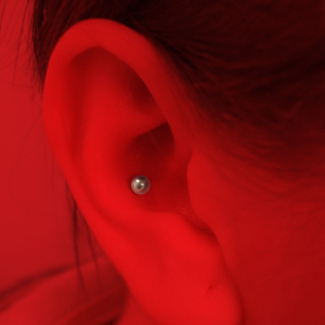 CONCH Piercing Image