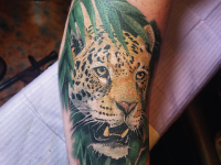 leopard jungle Tattoo