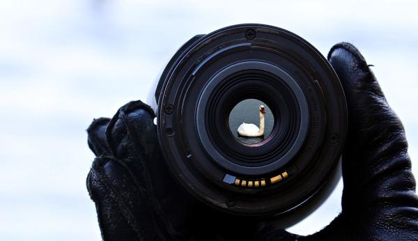 Capturing your Best! Building Up your Portfolio