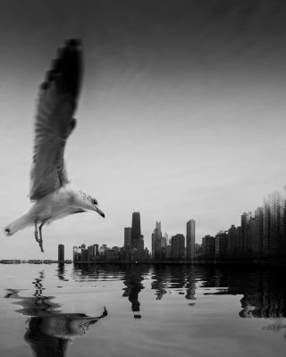 Black and White: This Photographer Gets 1 Million Followers for His Stunning Photos