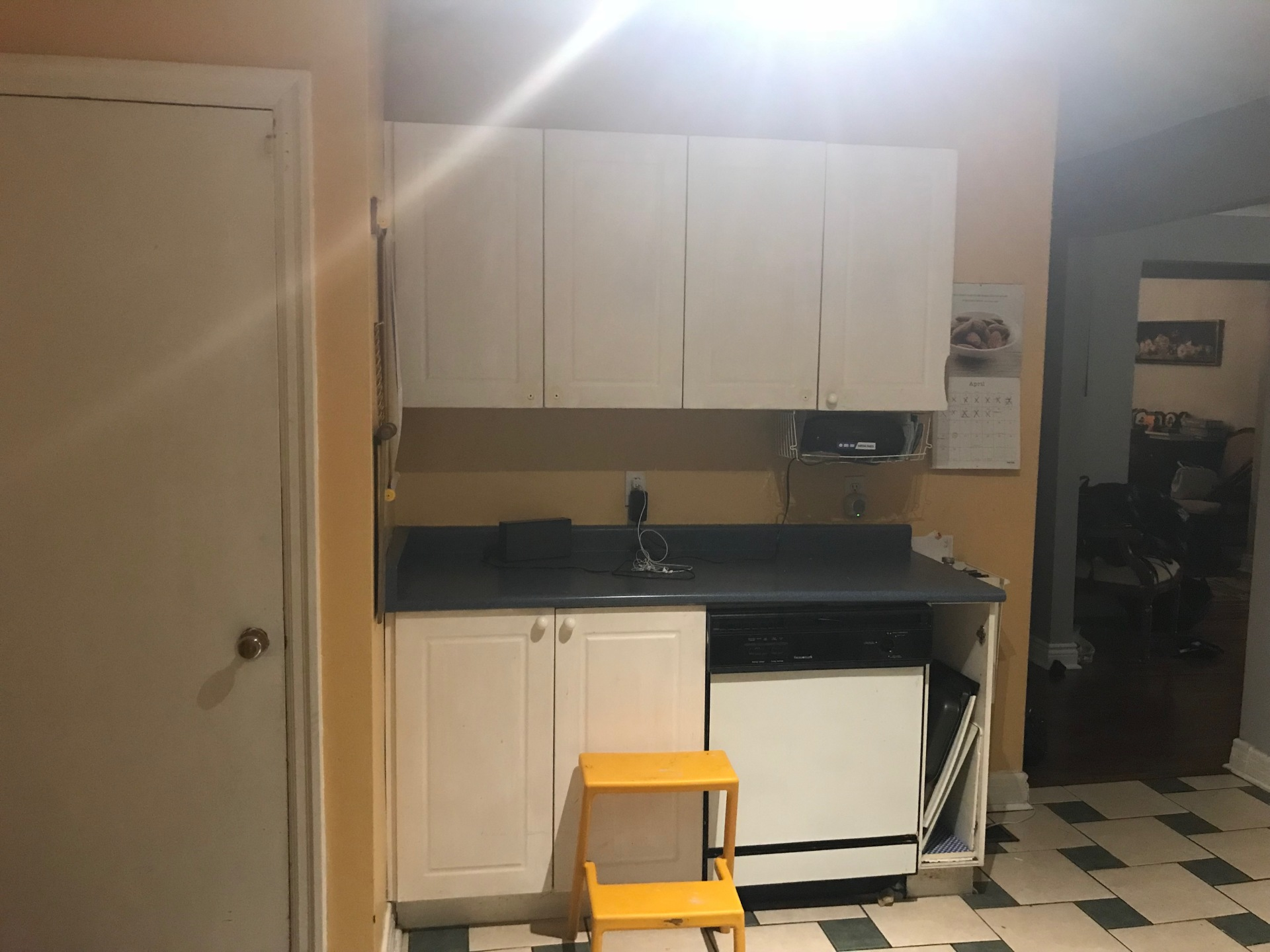 Old Dishwasher / Pantry location