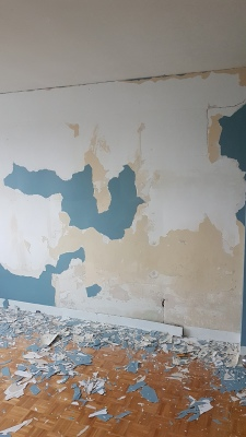 Another Renovation Nightmare: The Plaster Prep (Video)