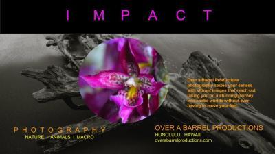Impact Flyer Design
