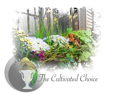 The Cultivated Choice