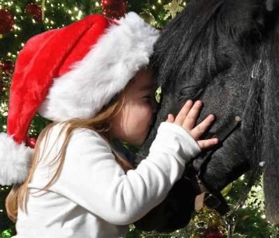 Christmas Pony Auction