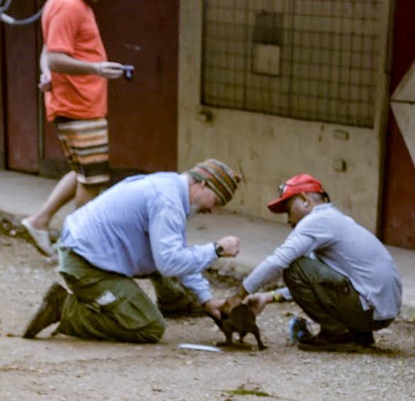 Mac gets help wrangling a pup