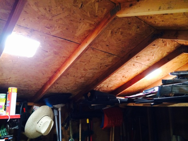 Natural light coming in from innovated turtle vents.