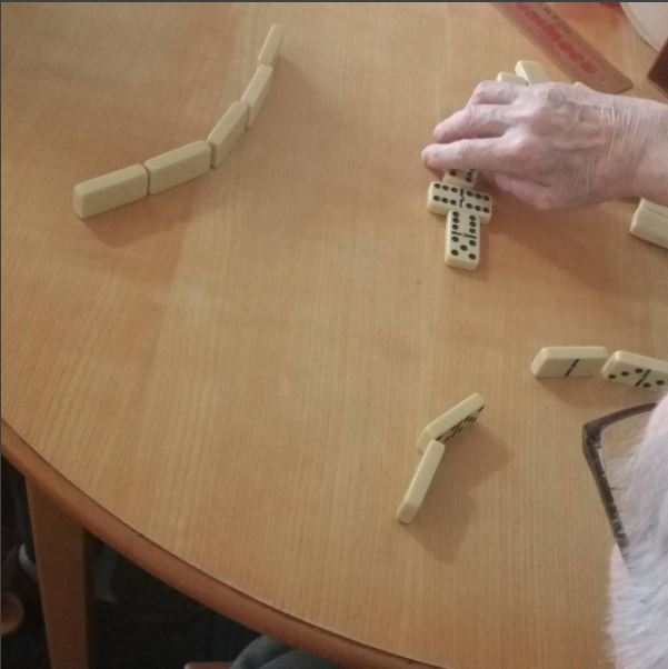 Playing Domino's