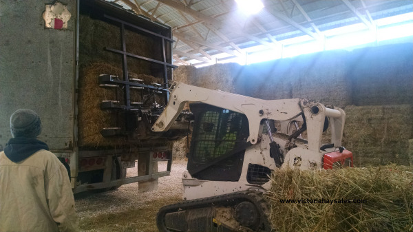 Loading bundles of hay in the back of the walking floor trailer