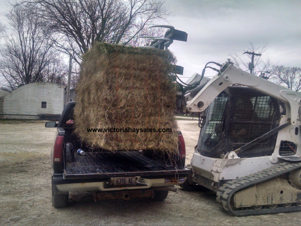 Putting a 21-bale bundle in the back of a pickup truck