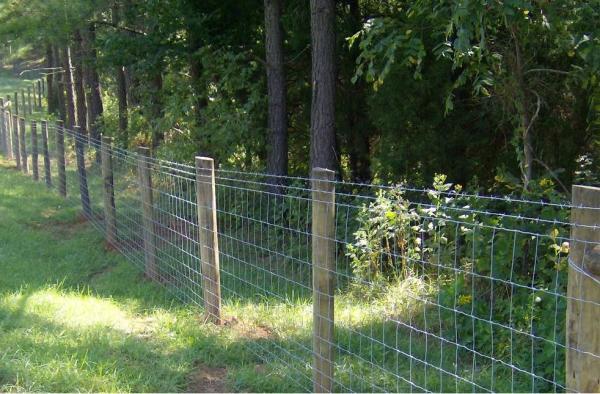 Wired Farm Fencing