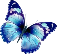 psychic blog butterfly whispers