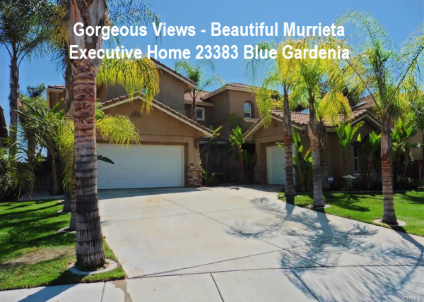 Blue Gradenia Murrieta Home For Sale