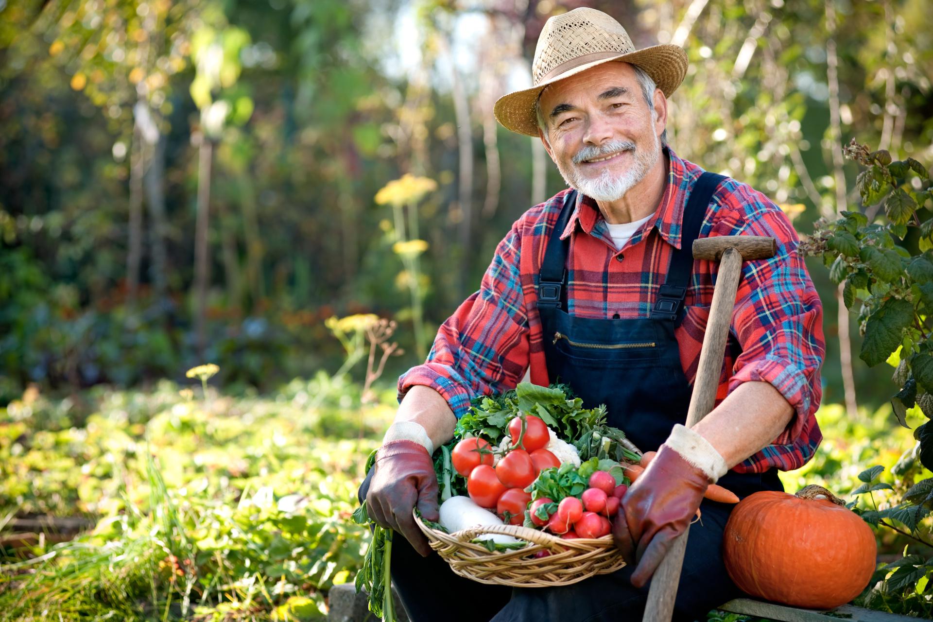Farming Industry