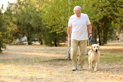 Dog Owners Get 22 Minutes Per Day More Exercise Than Non Dog Owners