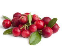 Drinking Cranberry Juice Can Help You Avoid A Urinary Track Infection Or UTI