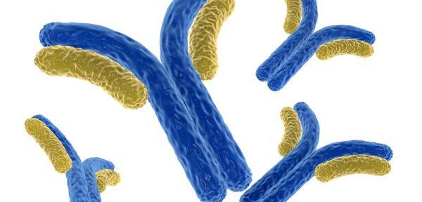 Physical Activity Can Help Ward Off Alzheimer's Disease