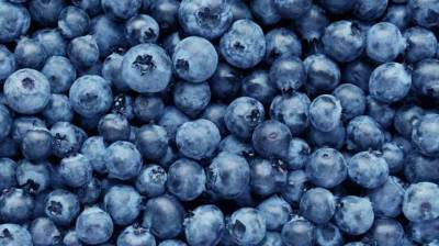 Antioxidants Have Many Health Benefits: Eat Your Blueberries