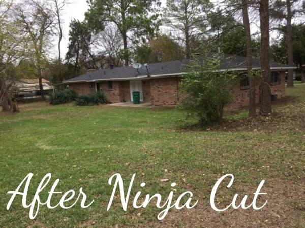 After Ninja Cut