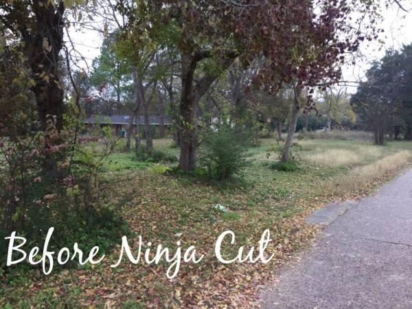 Before Ninja Cut
