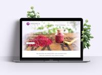 Company Website, e-Commerce
