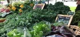 Green City Market at Wrigley Park