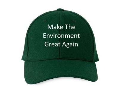 Make the Environment Great Again!