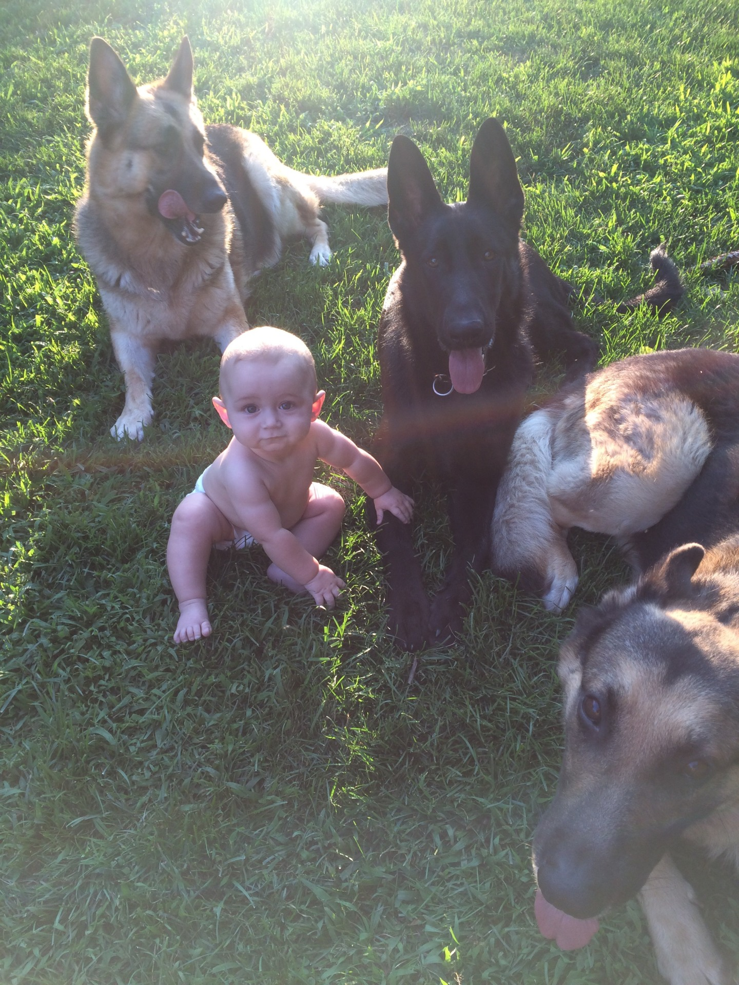 Trenton with our dogs
