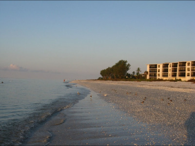 Sundial Resort at sunrise. New shells wash in with every tide.