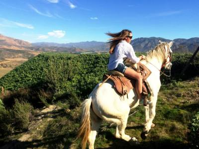 Horse riding in Baja