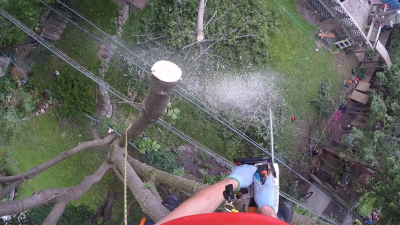 Branch removal over hydro