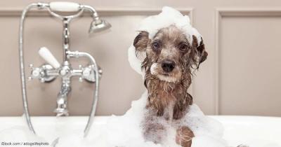 Bath for Beauty