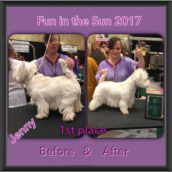 award winning handstripping groomer