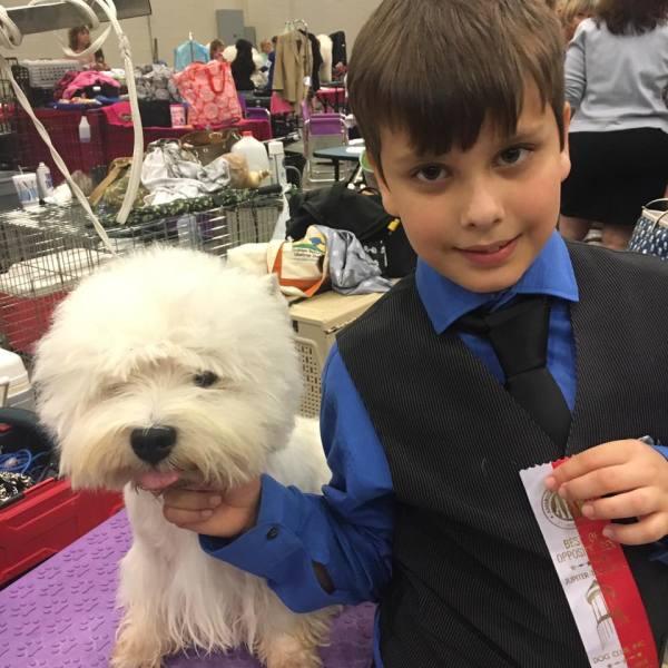 Titusville Dog Show