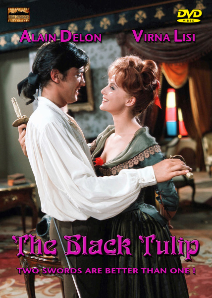 The Black Tulip (La Tulip Noir)