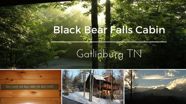 Black Bear Falls Cabin Vacation Rental - Gatlinburg TN
