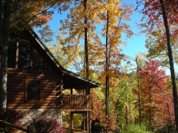 Fall Color around Black Bear Falls Cabin