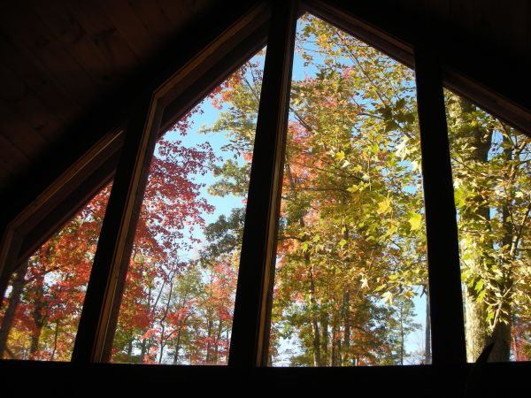 Black Bear Falls Cabin - Fall Color