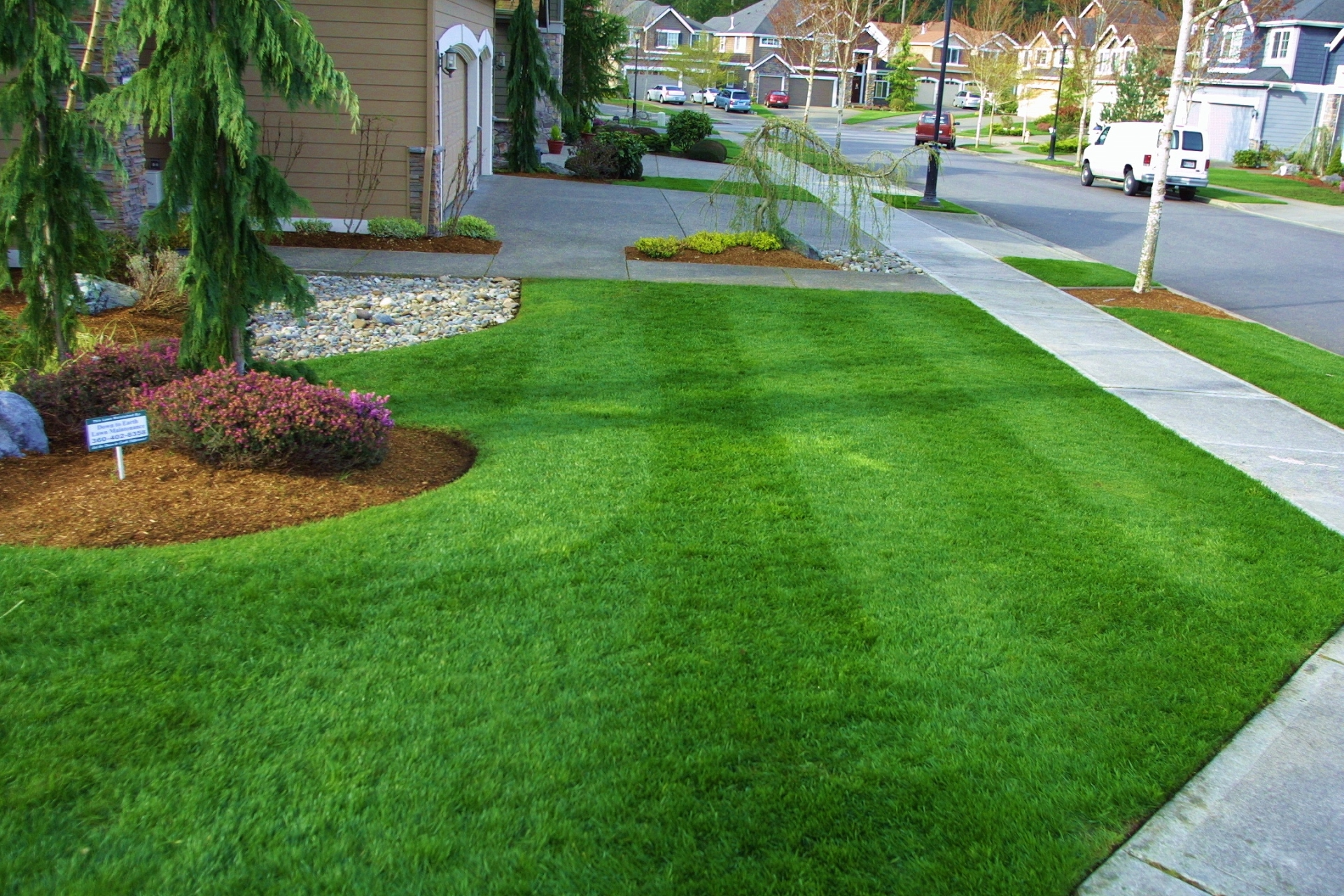 Lawn for Lawn care and maintenance