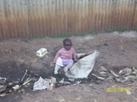 Delight sitting in trash pile