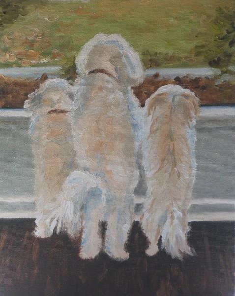 Chleo, Gigi and Lucy