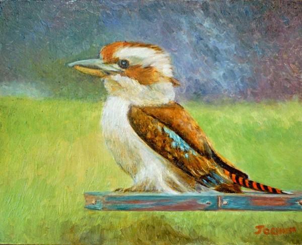 Kookaburra   Sold